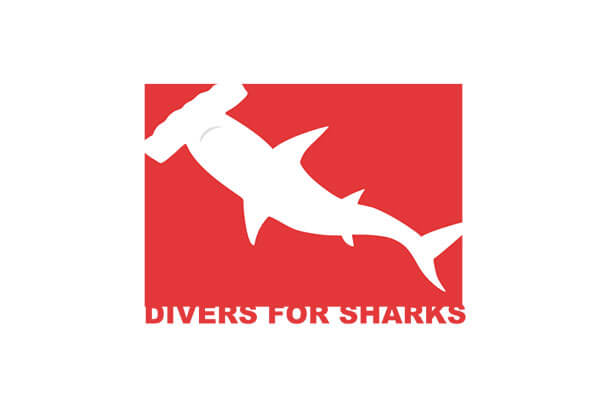 Cliente Fee: Divers for Sharks