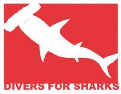 thumb-cliente-logo-divers-for-sharks-depoimento